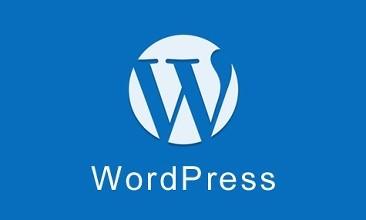 WordPress禁用文章修订和自动保存功能