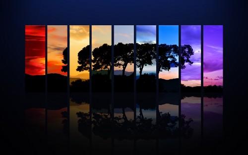 tree spectrum wallpapers hd