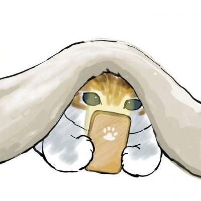 九宫格的猫猫