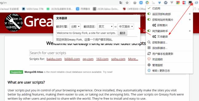 网页翻译助手js脚本v1.2.9 最新版