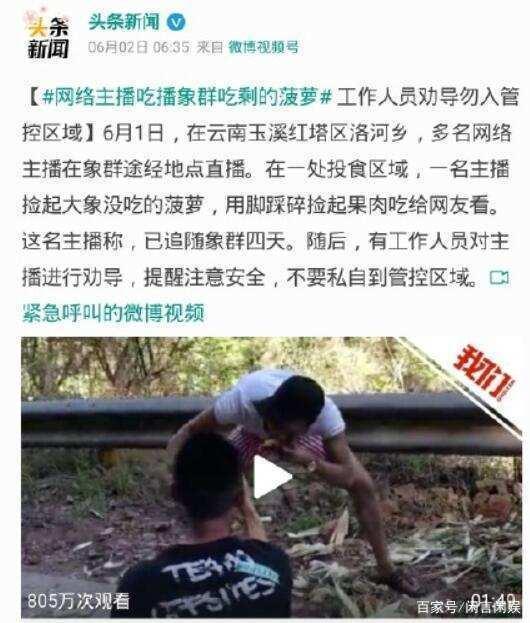 网络主播吃播象群吃剩的菠萝引发争议,网友:怎么不吃大象粪便?
