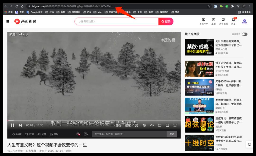 一个免费解析下载各大视频平台的网站